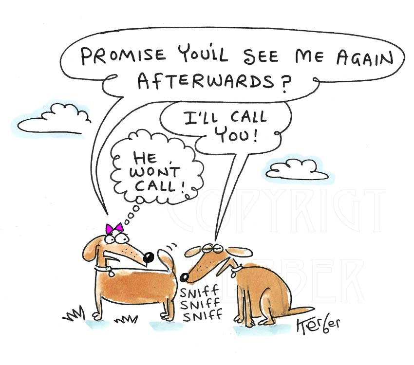 2 dogs cartoon